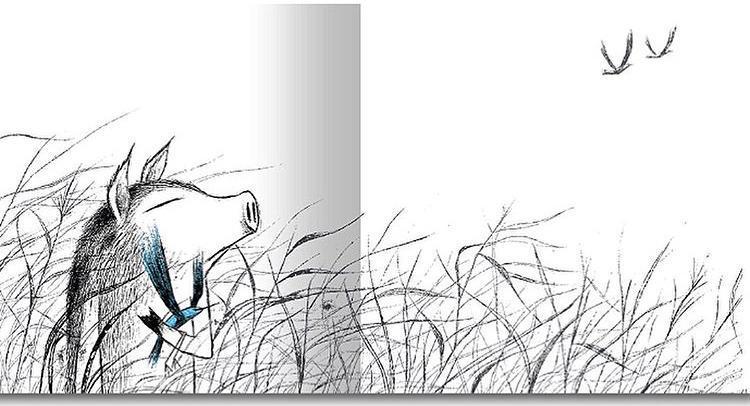《青鸟》(The Blue Bird),赵善暻,Somebooks 出版社