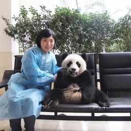 Zhang Yue  张月
